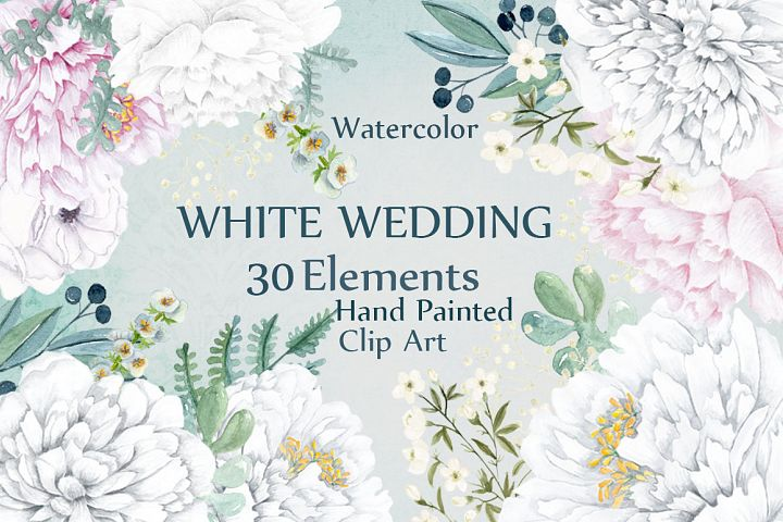 Watercolor white peony flowers clipart