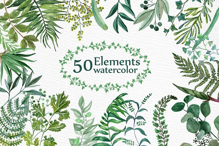 Watercolor Ferns Clipart