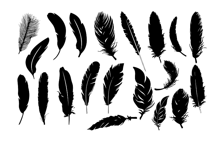 Feather Silhouettes SVG DXF EPS PNG AI