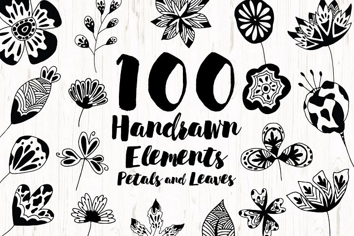 Hand Drawn Element Petals and Leaves