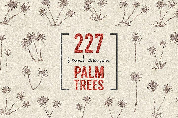 227 hand drawn palms + BONUS
