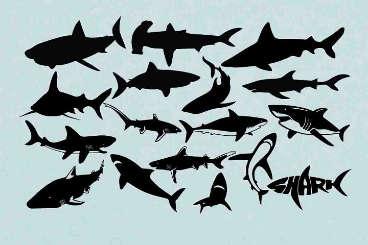 Shark Silhouette SVG DXF EPS PNG AI