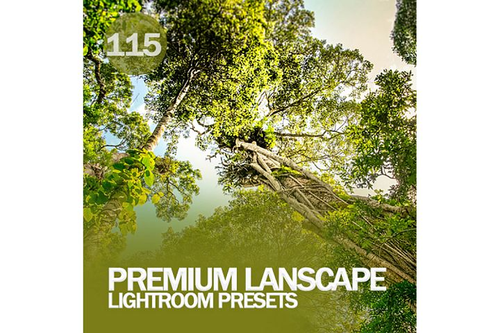Premium Lanscape Lightroom Presets
