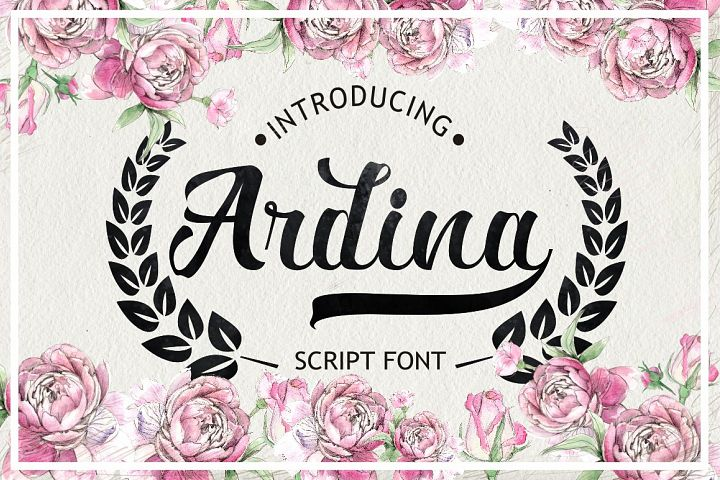 Ardina Script - Free Font of The Week
