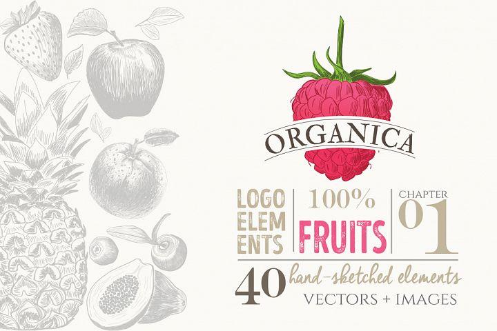ORGANIC LOGO ELEMENTS  FRUITS