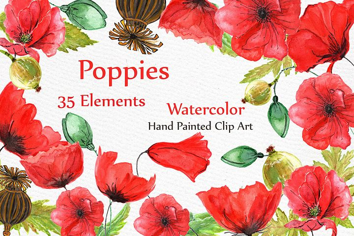 Watercolor flowers- Poppies clipart