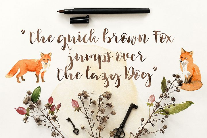 Ilana Bloom - Free Font of The Week Design 3