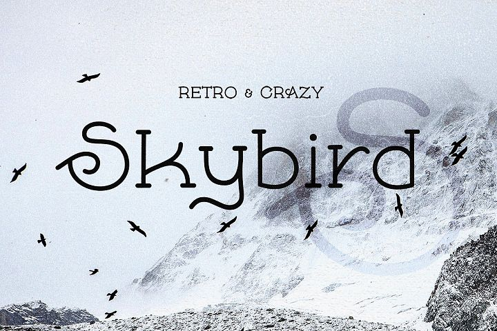 Skybird - Crazy, unique & retro