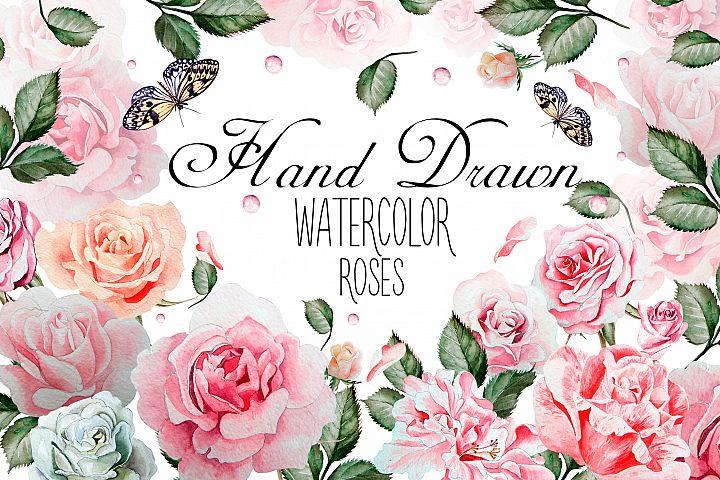 Hand drawn watercolor roses 2