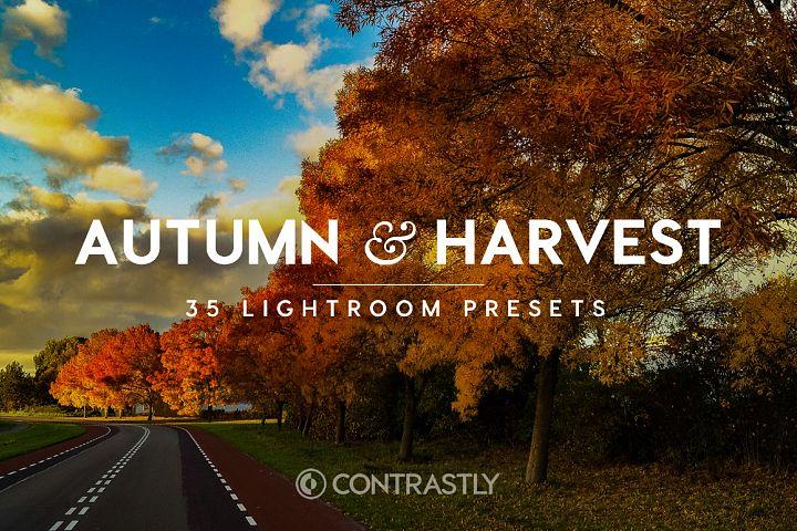 Autumn & Harvest Lightroom Presets