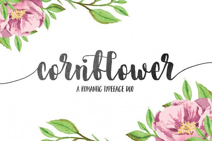 Cornflower DUO