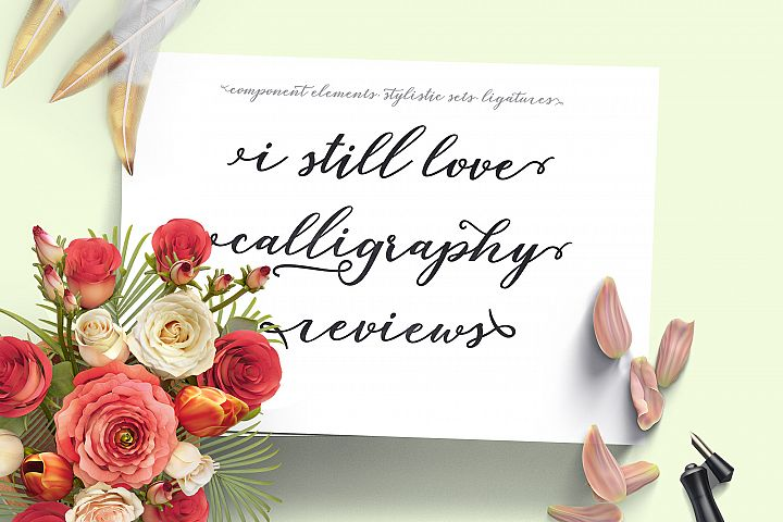 Lovelia Script & Comic - Free Font of The Week Design 4