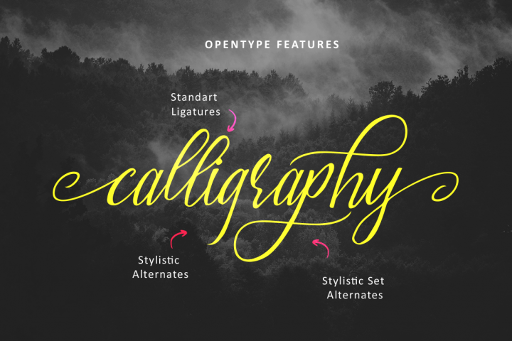 Brightside Typeface - Free Font of The Week Design 2