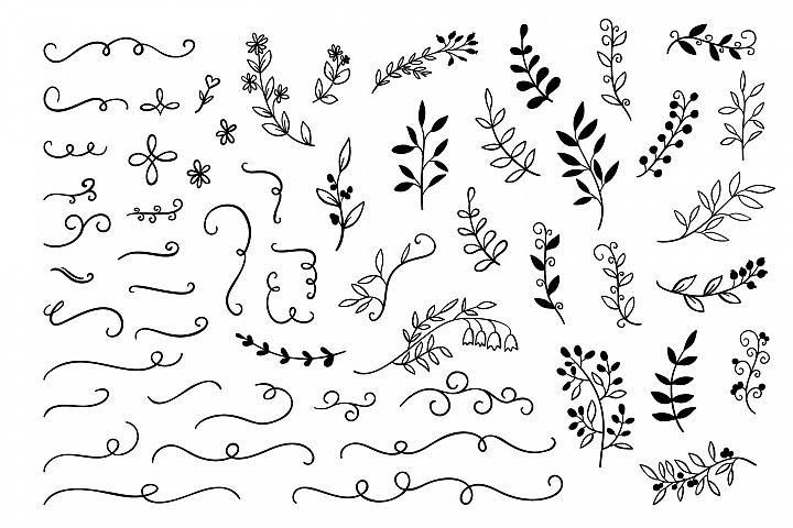 55 Hand drawn Doodle branches, dividers set