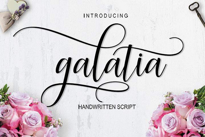 Galatia Script | Discounts 50% all product