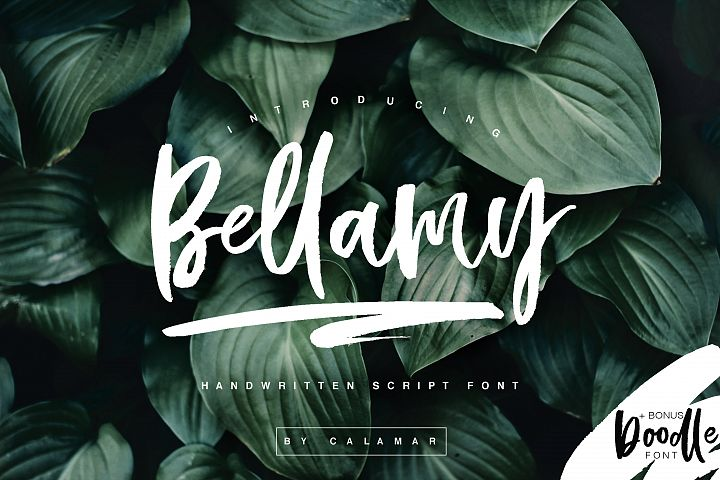 Bellamy Script