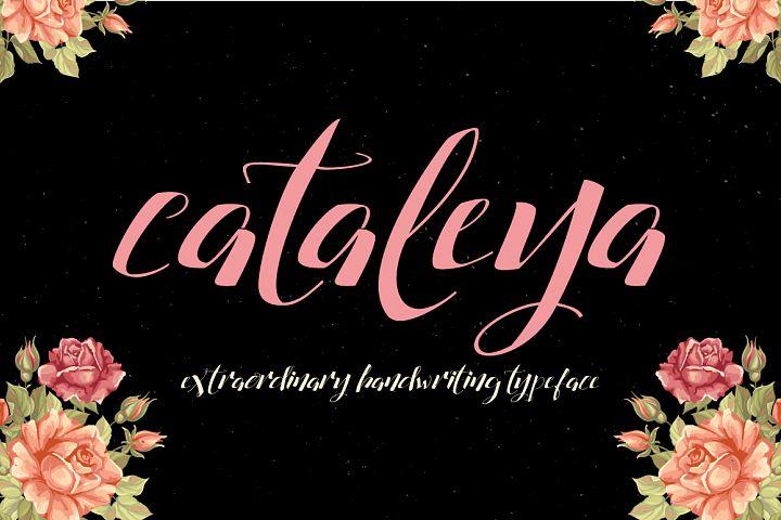 Cataleya Typeface (Full)