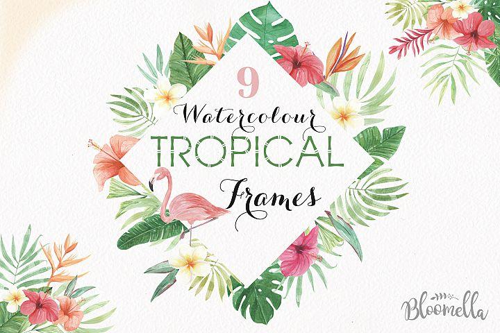 Tropical Watercolor Clipart Frames Border Flamingo Flowers Hibiscus