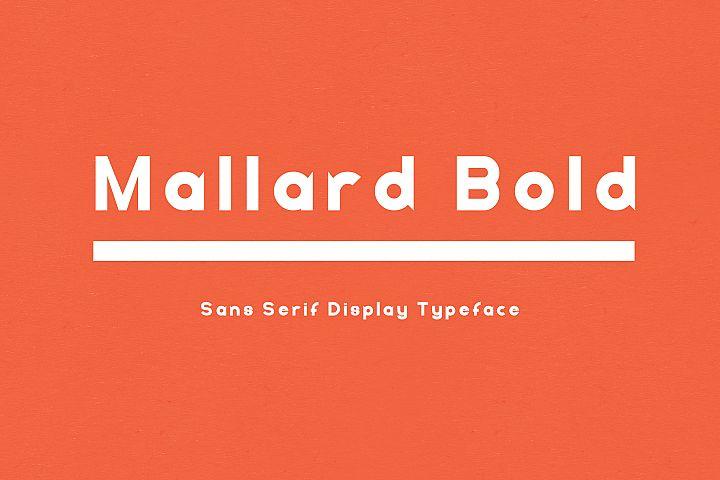 Mallard Bold