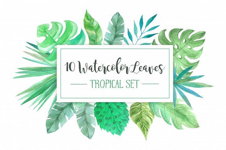 Watercolor Tropic Leaves Set