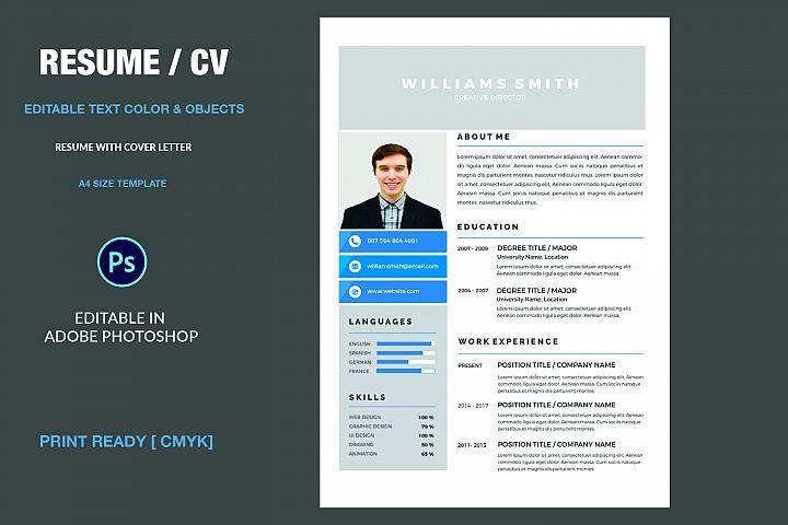 Professional  Resume example 1