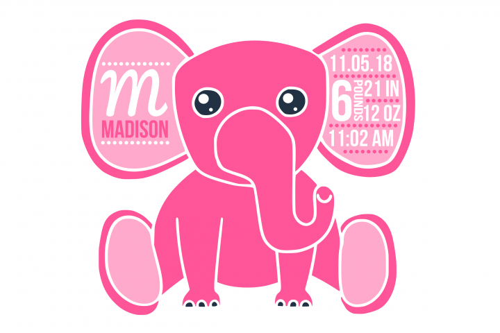 Birth stats svg, birth stats template, birth announcement svg, baby stats svg, newborn svg, welcome baby svg, cricut, silhouette, elephant svg