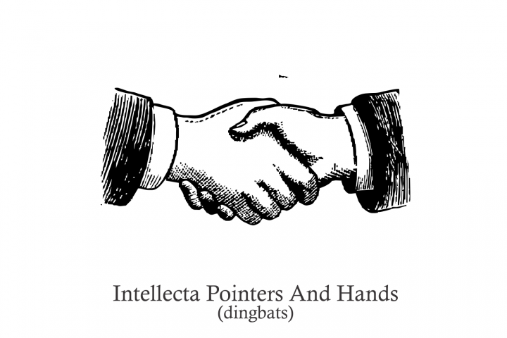 Intellecta Pointers And Hands