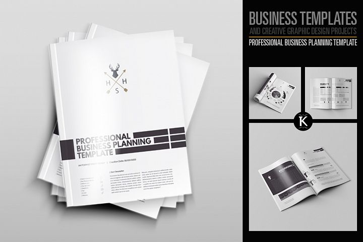 Professional Business Planning Template