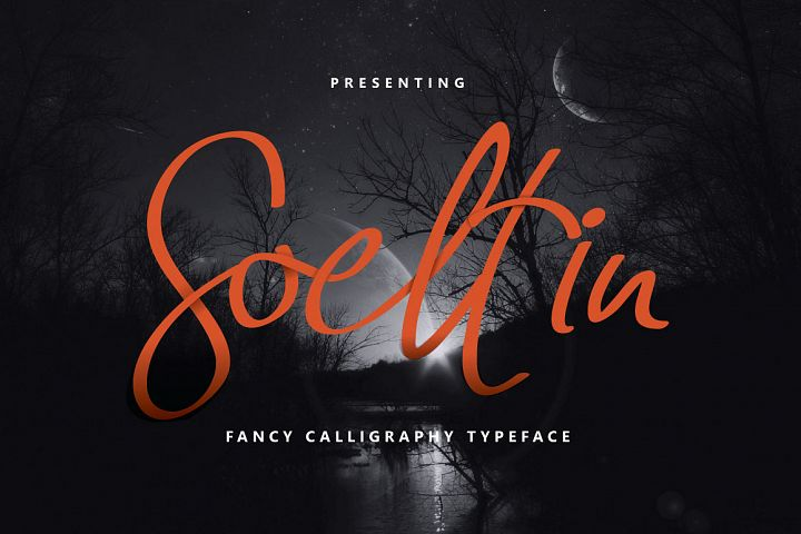 Soeltin Typeface