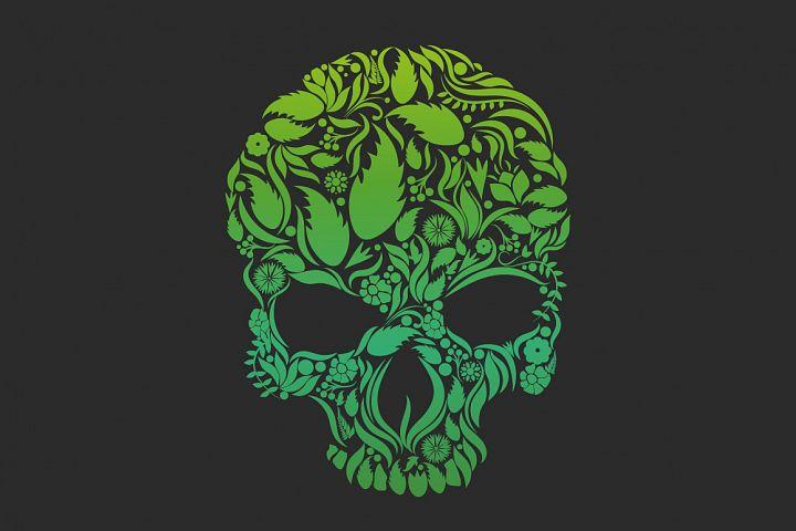 Herbs Skull