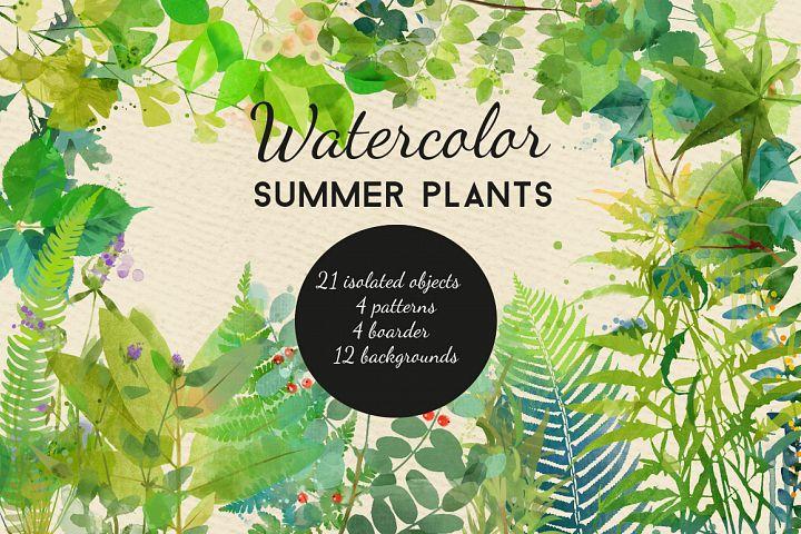 watercolor summer plants