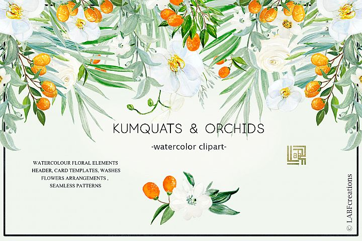 Kumquat & white orchids. Watercolors clipart collection.