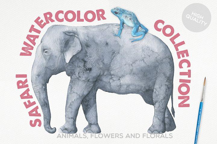 Safari Watercolor Collection