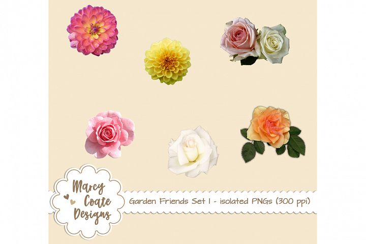 Garden Friends Set 1 - Real Flowers isolated PNGs
