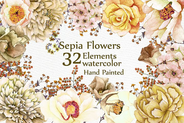 Watercolor Sepia flowers Clipart