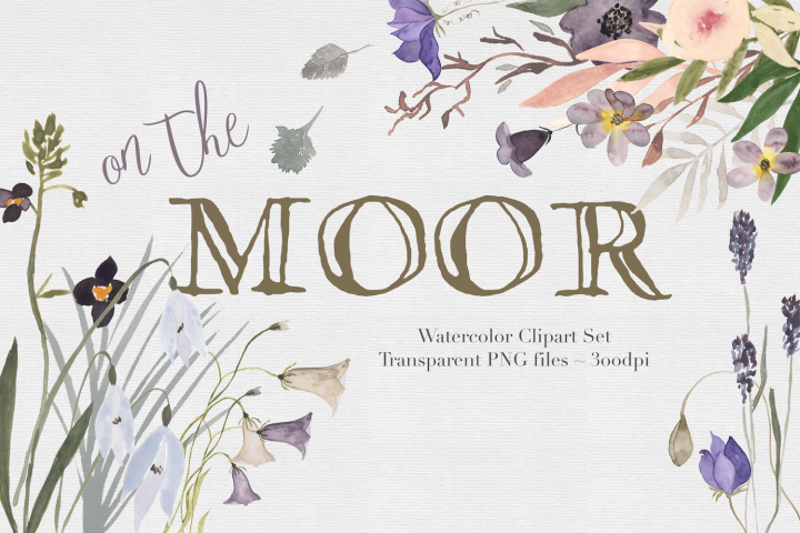 On the Moor Watercolor Florals
