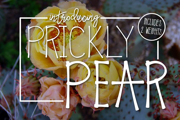 Prickly Pear Typeface