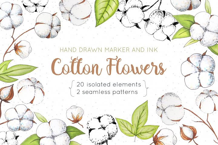 Cotton Flowers Handdrawn Set