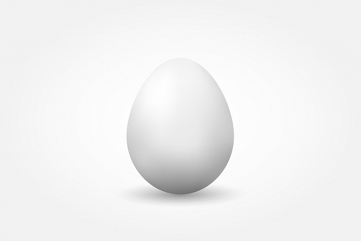 Vector realistic egg with shadow