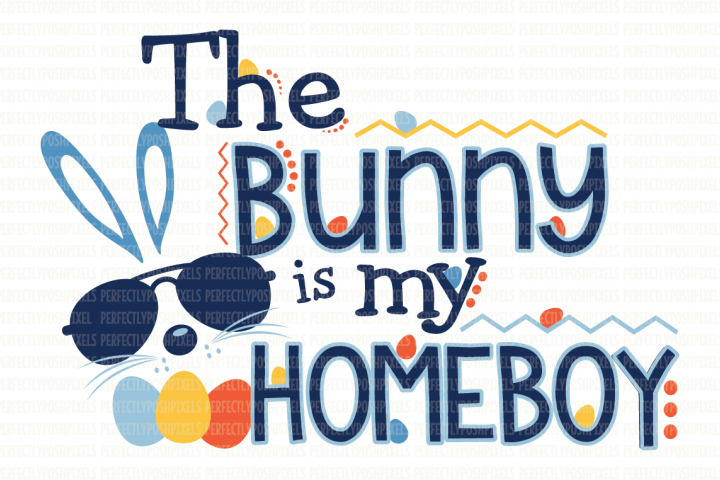 The Bunny Is My Homeboy SVG File example 1