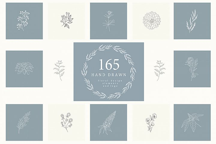 165 Hand Drawn Floral Elements.