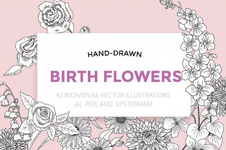 Birth Flowers Vector Illustrations
