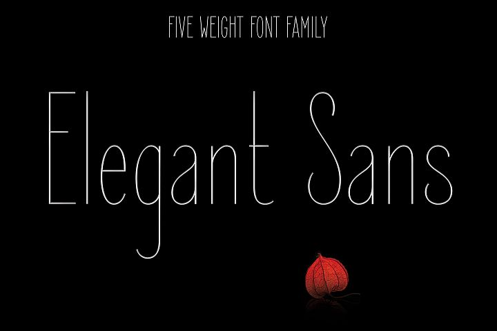 Elegant Sans Font Family