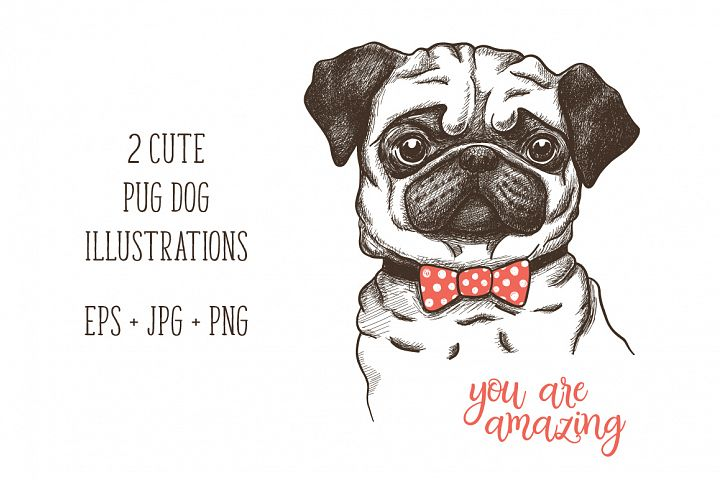 hand drawn funny fashionable pug
